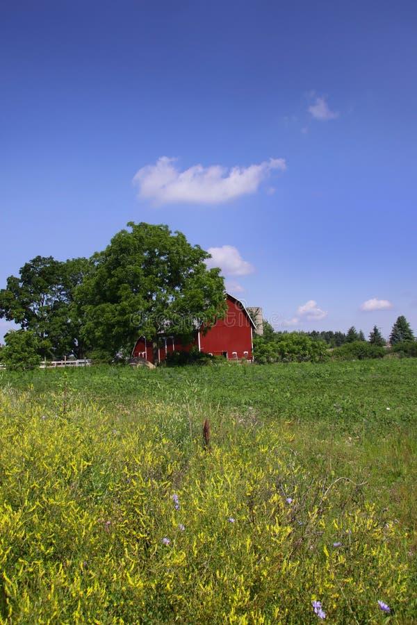 sceniczne rolne stajni ziemie obraz stock