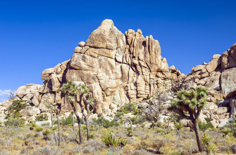 Sceniczne skały w Joshua drzewa parku narodowym w Chowanej dolinie zdjęcie royalty free