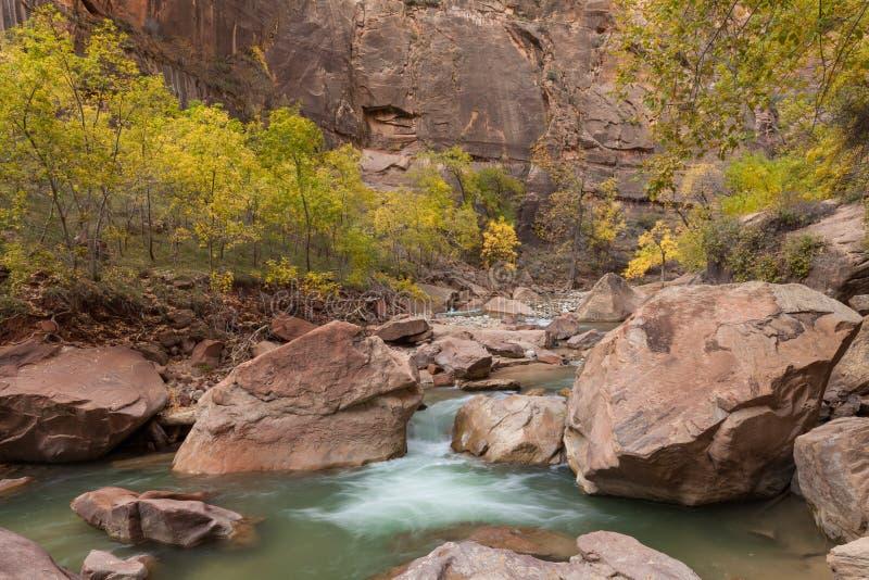 Sceniczny Dziewiczy Rzeczny Zion park narodowy Utah w spadku zdjęcia royalty free