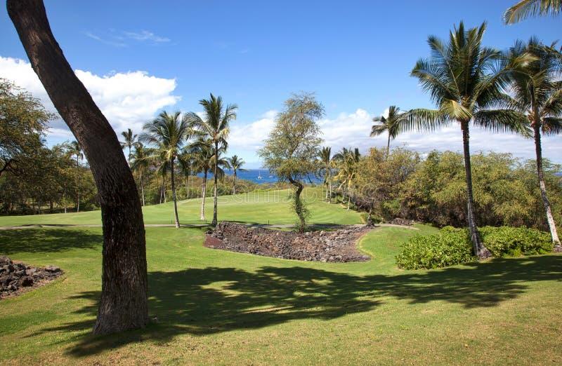 Sceniczny Golfowy widok na Maui obraz stock
