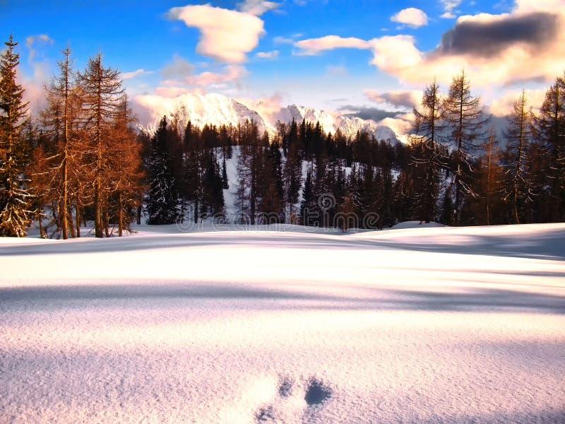 Sceniczny halny zima krajobraz z odciskami stopy zakrywającymi z świeżym śniegiem fotografia royalty free