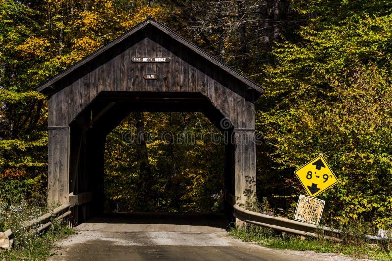 Sceniczny Historyczny Zakrywający most i droga gruntowa - Vermont obrazy stock