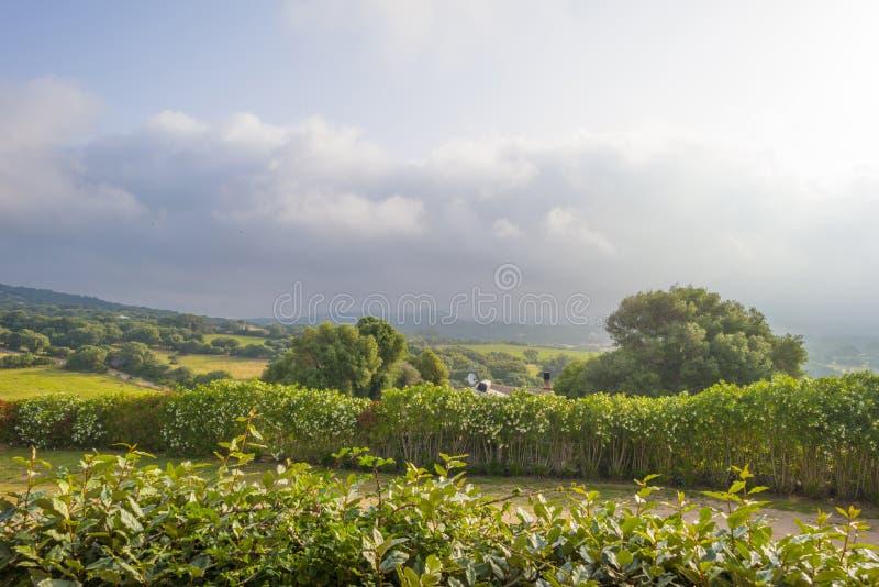 Sceniczny krajobraz zieleni wzgórza i skaliste góry wyspa Sardinia zdjęcie royalty free
