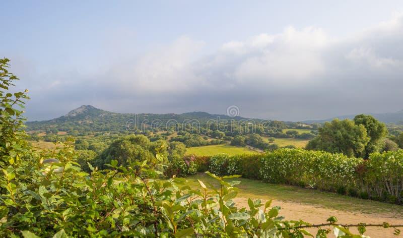 Sceniczny krajobraz zieleni wzgórza i skaliste góry wyspa Sardinia fotografia royalty free