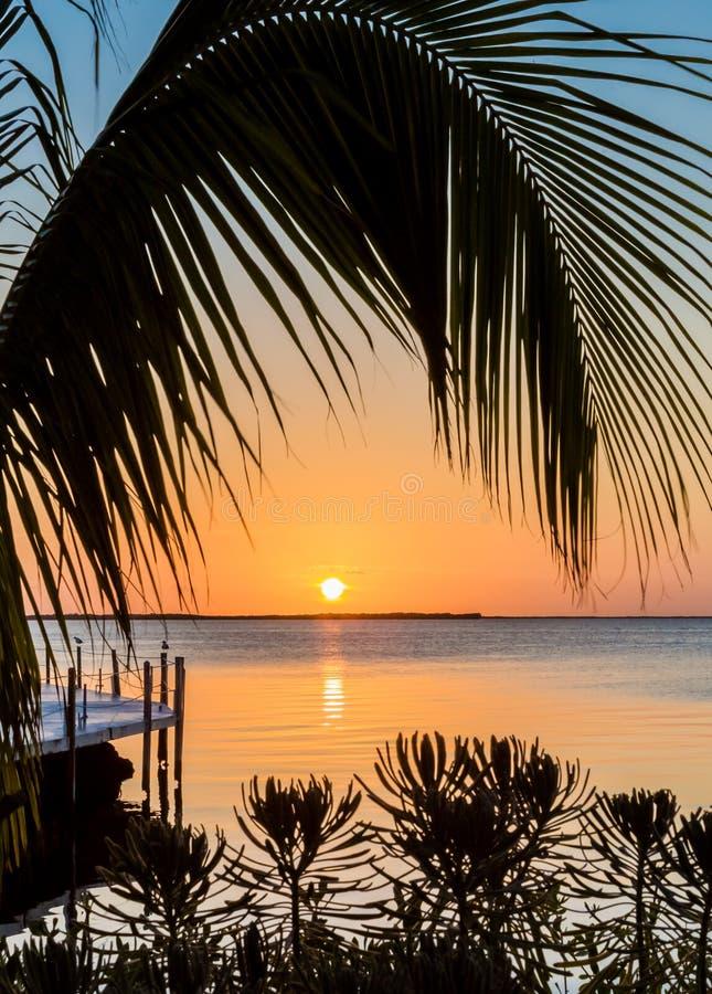 Sceniczny tropikalny Floryda wpisuje zmierzch obraz stock