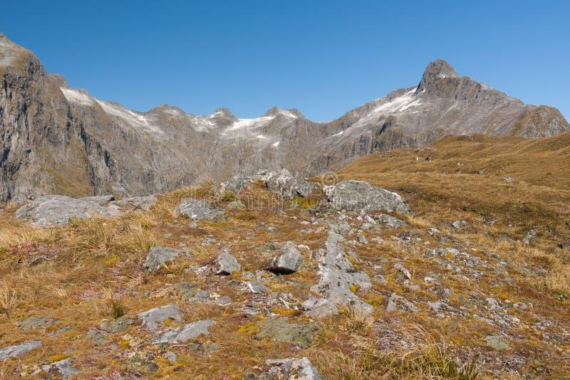 Sceniczny widok góra w Nowa Zelandia, Mackinnon przepustce - †'Milford ślad zdjęcia stock
