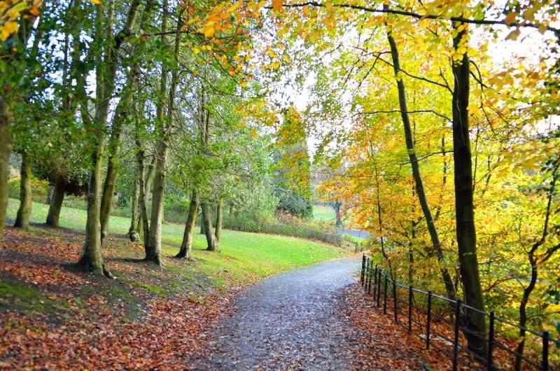 Sceniczny widok Kelvingrove park - Glasgow, Szkocja zdjęcia stock