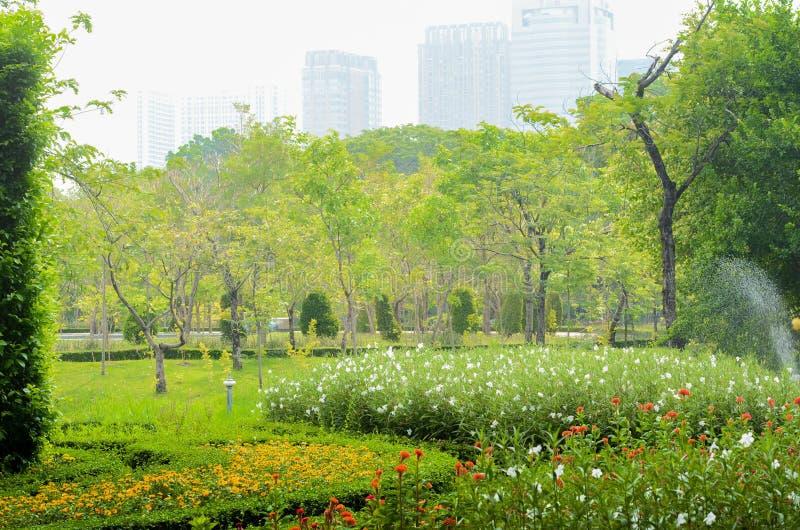Sceniczny widok park w centrum du?y miasto fotografia royalty free