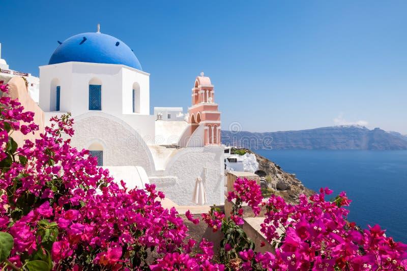 Sceniczny widok tradycyjni cycladic domy z kwiatami w foreg zdjęcie royalty free