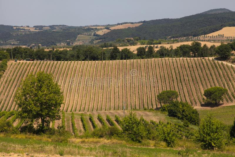 Sceniczny widok typowy Tuscany krajobraz, Włochy obraz royalty free