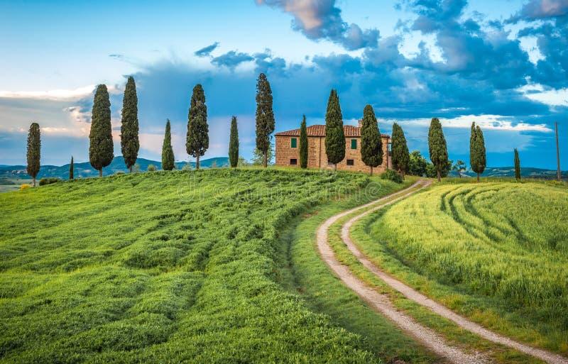 Sceniczny widok typowy Tuscany krajobraz, W?ochy fotografia royalty free