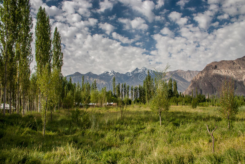 Sceniczny widok w nubra dolinie fotografia royalty free