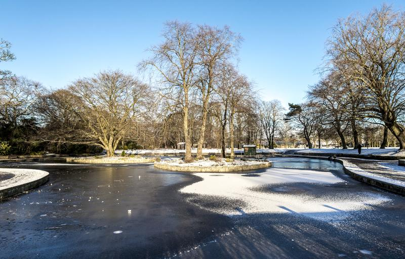 Scenisch zicht op een bevroren meer in het centrum van Duthie Park, Aberdeen, Schotland royalty-vrije stock afbeeldingen