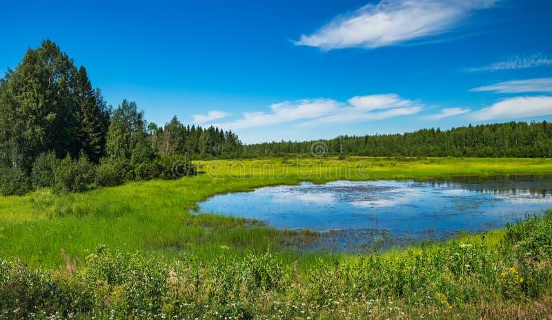 Scenisch zomerlandschap in Norrbotten, Zweden royalty-vrije stock fotografie