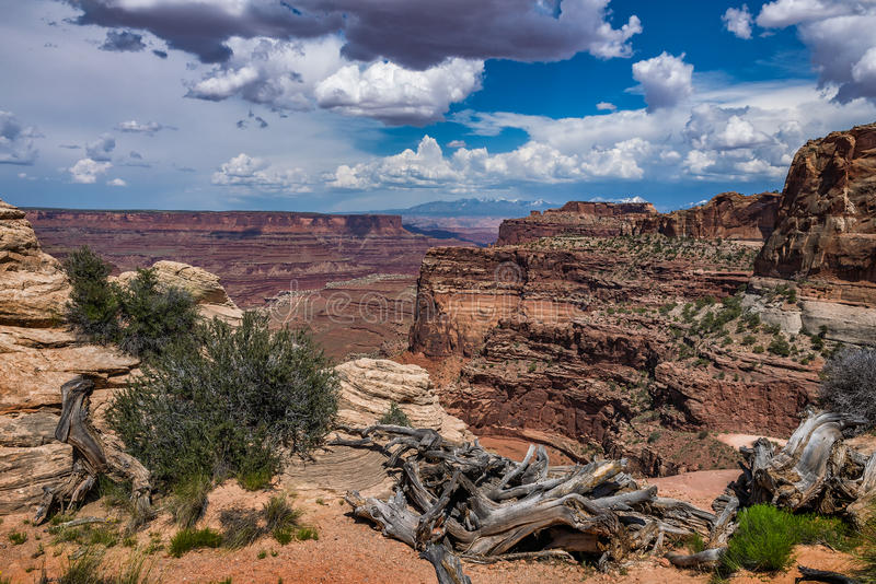 Scenisk ökensikt, canyonlands utah arkivbilder