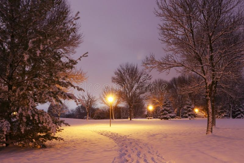 Scenisk bakgrund för vinternattnatur arkivbilder