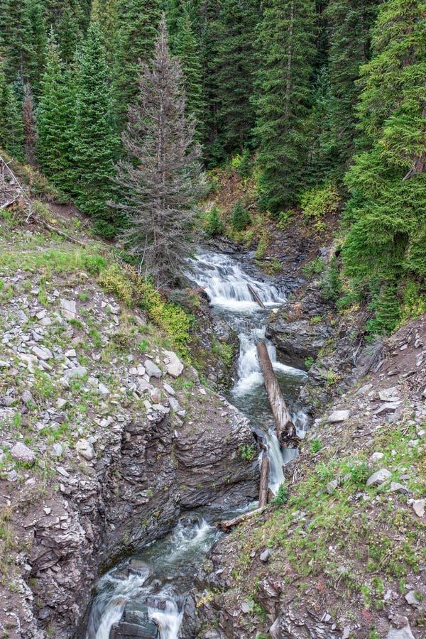 Scenisk bergvattenfall arkivbilder