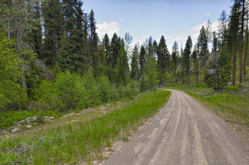 Scenisk Byway i Montana royaltyfri fotografi