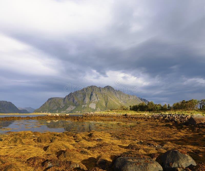 Scenisk fjord på Lofoten öar med imponerande bergmaxima och dramatisk himmel öar lofoten Lofoten landskap, Lofoten öar fotografering för bildbyråer