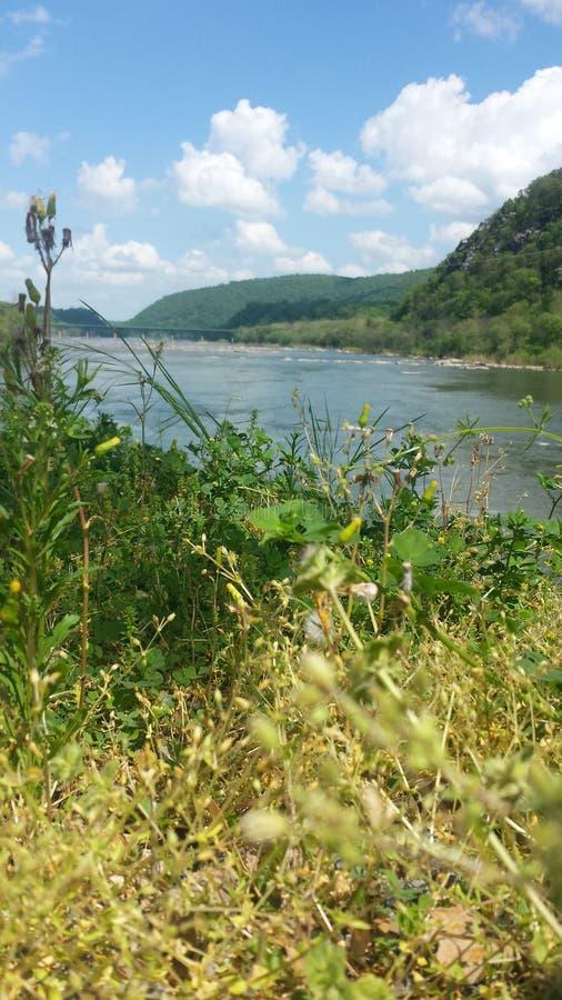 scenisk flod arkivbilder