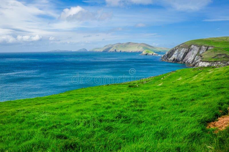 Scenisk irländsk kustlinje royaltyfri bild