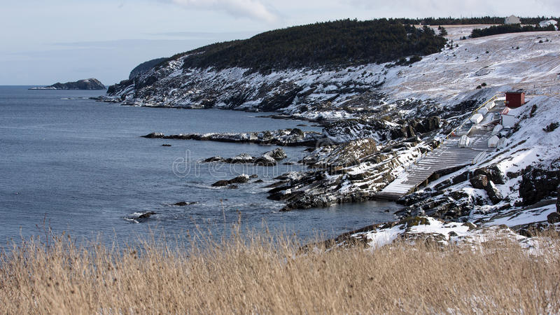 Scenisk kustlinje i påseliten vik, Newfoundland och labrador royaltyfri foto