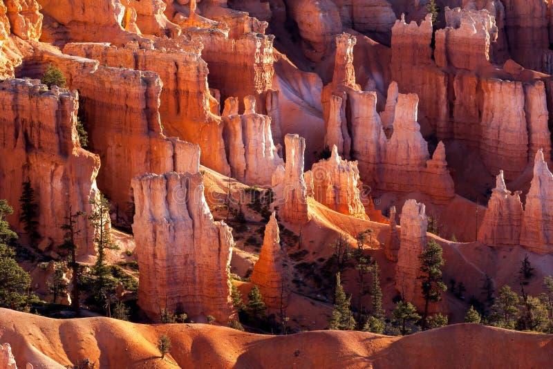 Scenisk sikt av Bryce Canyon fotografering för bildbyråer