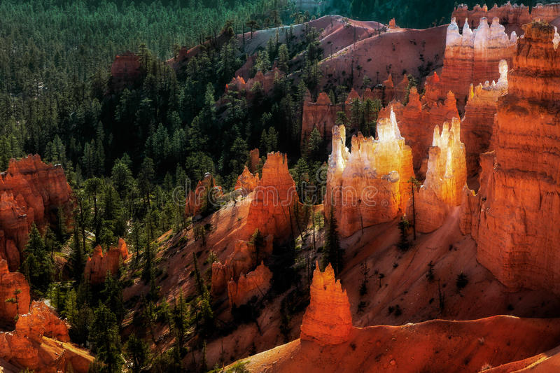 Scenisk sikt av Bryce Canyon royaltyfria bilder