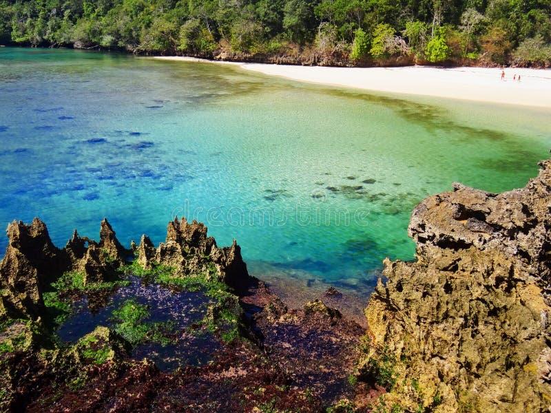 Scenisk sikt av den gömda lagun med den vita stranden Segara Anakan royaltyfria bilder