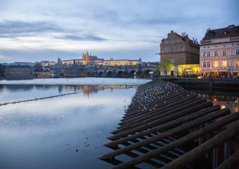 Scenisk sikt av den historiska mitten Prague, den Charles bron och byggnader av den gamla staden arkivfoton
