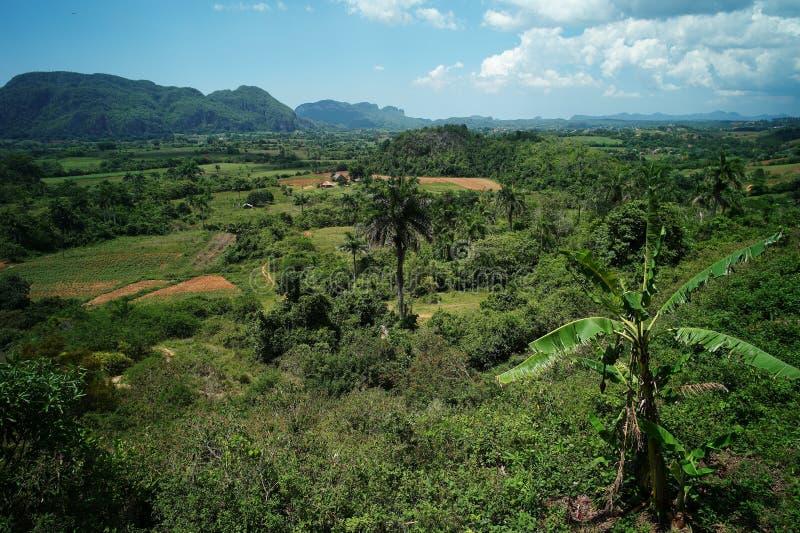 Scenisk sikt av den Vinales dalen, Kuba royaltyfri bild