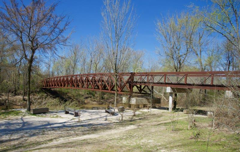 Scenisk sikt av en bro över ett skogsbevuxet område arkivfoto