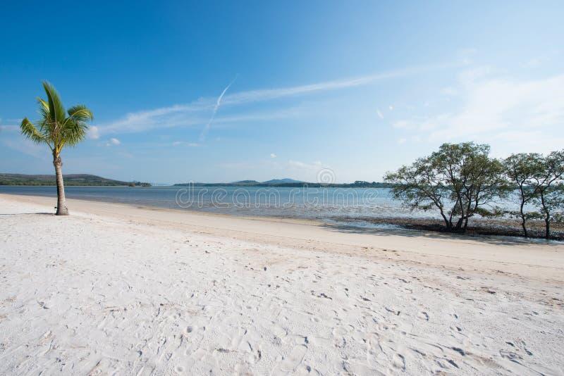 Scenisk sikt för tropisk strand på havet royaltyfri foto