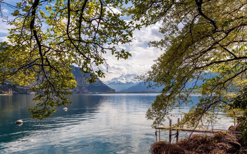 Scenisk sikt på fjällängbergen och Genève sjön, Schweiz royaltyfri bild