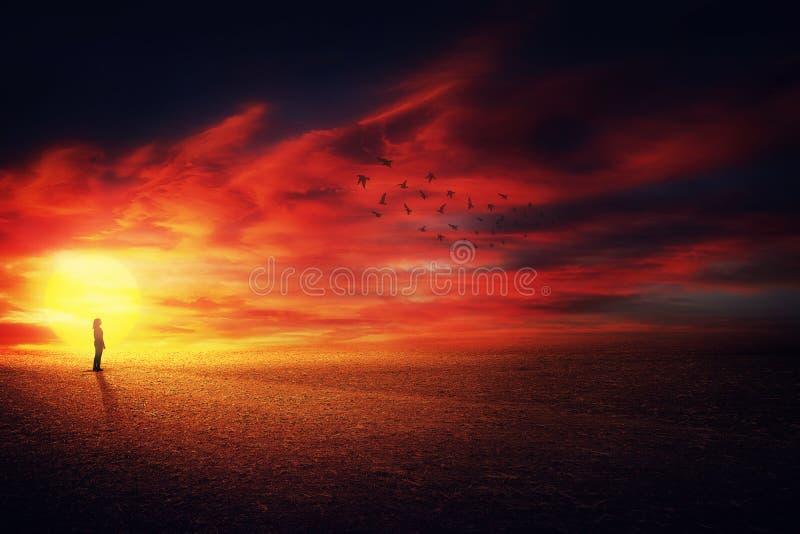 Scenisk solnedgångkontur arkivfoto