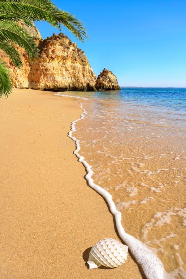 Scenisk strand i varmt solljus royaltyfri foto