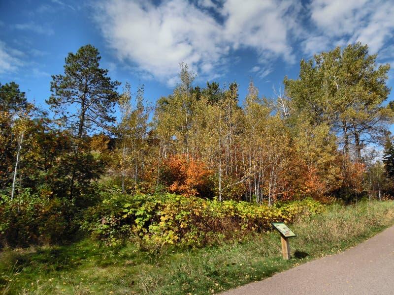 scenisk trail arkivfoto
