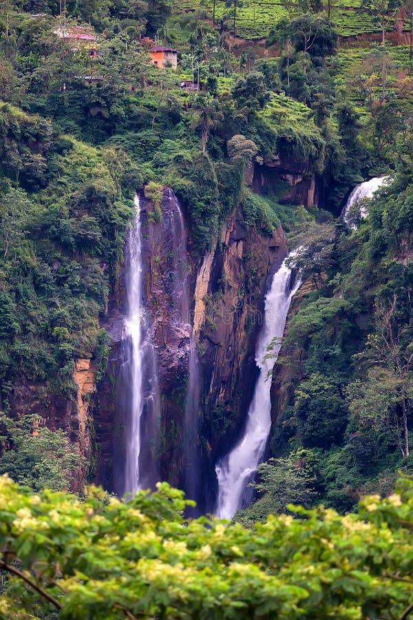 Scenisk tropisk vattenfall i djungel royaltyfri bild
