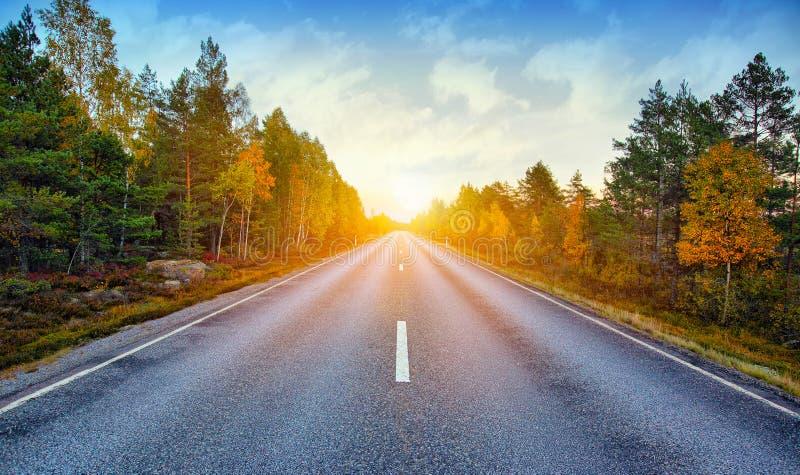 Scenisk väg för nedgång i Sverige arkivbilder