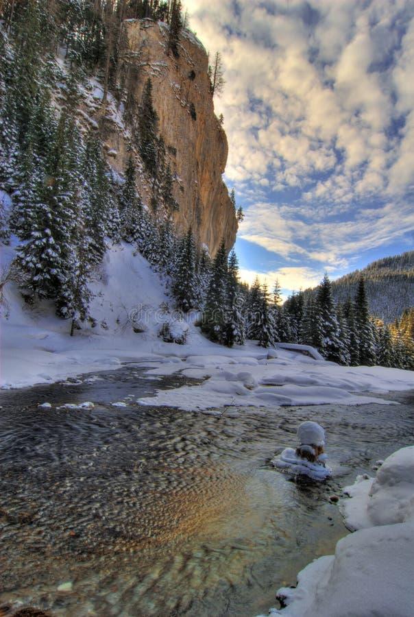 Scenisk Vinter För Flod Royaltyfria Bilder