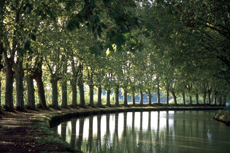 Sceniska Frankrike, Canal du Midi royaltyfria foton