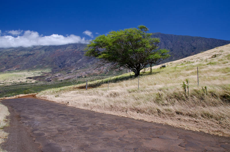 Sceniska Maui ös kustlinje, Hawaii arkivfoto