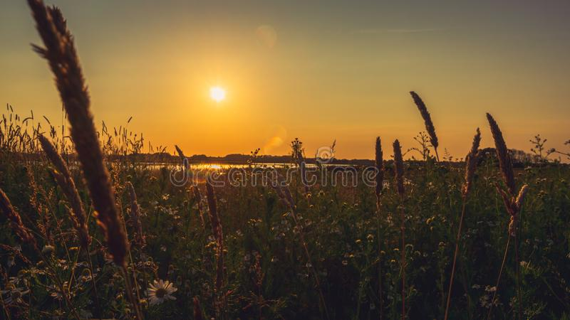Sceniskt bygdlandskap för solnedgång arkivfoto