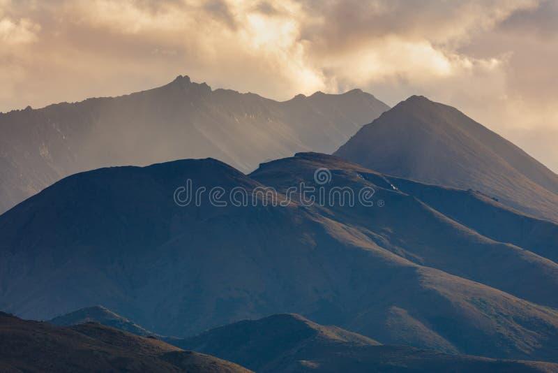 Sceniskt Denali nationalparkAlaska landskap royaltyfri bild