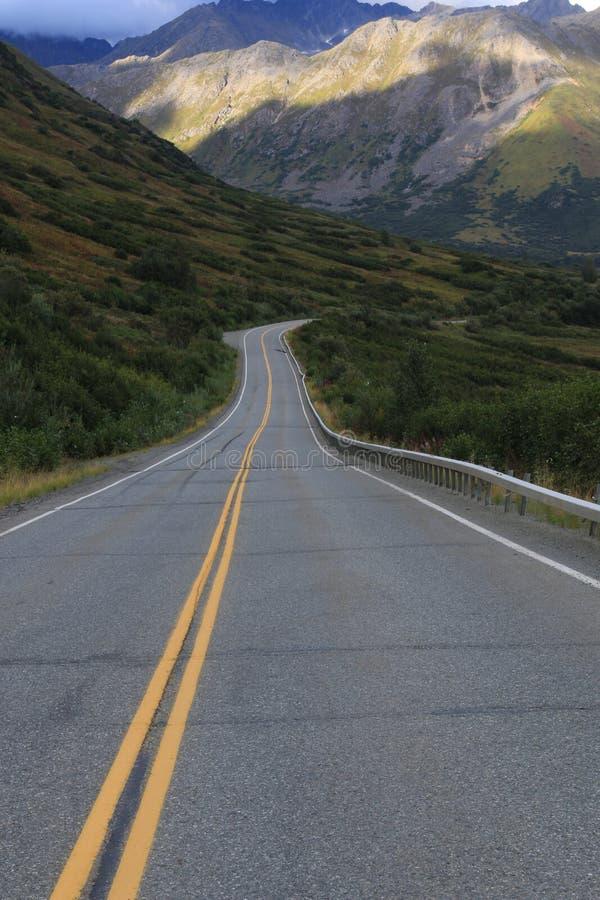 Sceniskt drev till och med Alaska royaltyfri fotografi