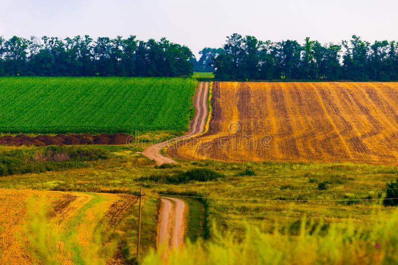 Sceniskt härligt typisk frodigt grönt landskap med fält royaltyfri fotografi