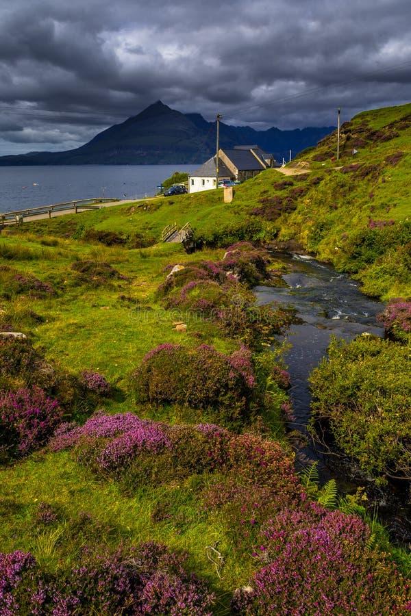 Sceniskt kust- landskap med bergfloden i den pittoreska dalen med blommor och bron på ön av Skye In Scotland arkivfoto