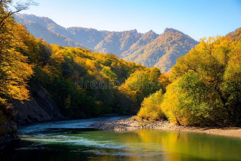 Sceniskt landskap med den härliga bergfloden Höst i mounta arkivbild