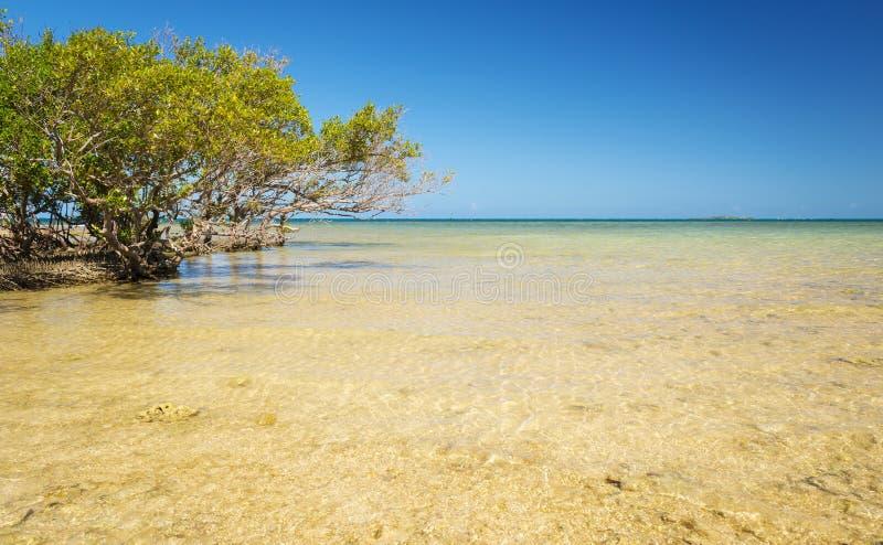 Sceniskt Nya Kaledonien hav arkivbild