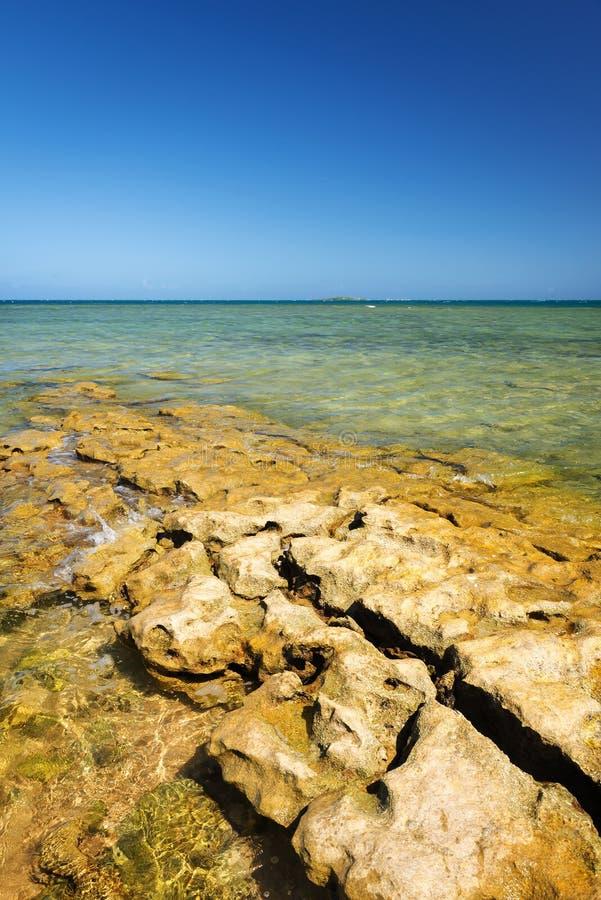 Sceniskt Nya Kaledonien hav arkivfoton